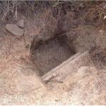 Excava7